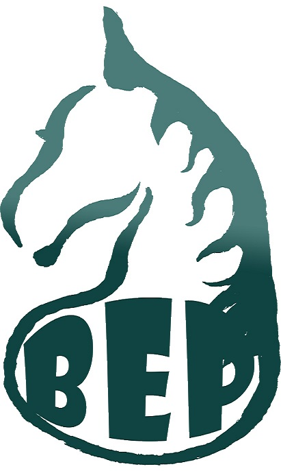 green-bep-logo_stretched